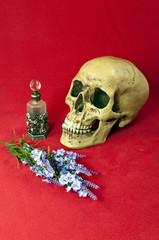 Literaturempfehlung: Das Parfüm Patrick Süskind