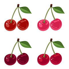 Set of four bunches of cherries. Vector illustration.