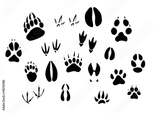 Animal footprints silhouettes