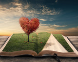 Fototapety Heart tree and book