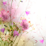 Floral border - blossom, beautiful blurred background