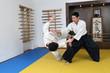 Demonstration of fighting art Aikido.
