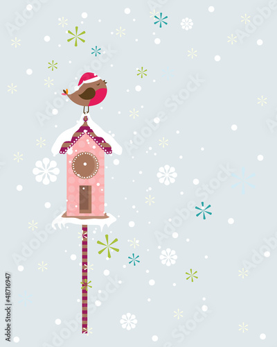 robin christmas bird