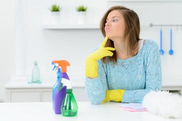 hausfrau mit reinigungsmittel