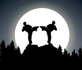 night fight - illustration