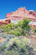 vertical view of the Castle in Capitol Reef