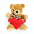 Teddy Bear holding a heart