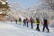 canvas print picture - Schneeschuhwandern
