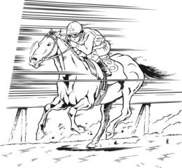 競馬、馬02