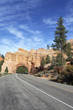 vertical view of Road to Bryce Canyon