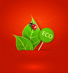 vector red background with leafs and ladybird