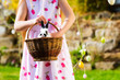 Child on Easter egg hunt with bunny