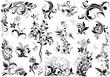 Vintage floral design elements
