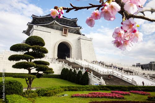 chiang-mai-kai-pamiatkowa-sala-w-taiwan-z-ladnym-sakura-kwiatem