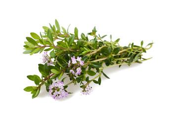 Savory  flowers