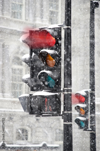 Traffic light in winter Poster