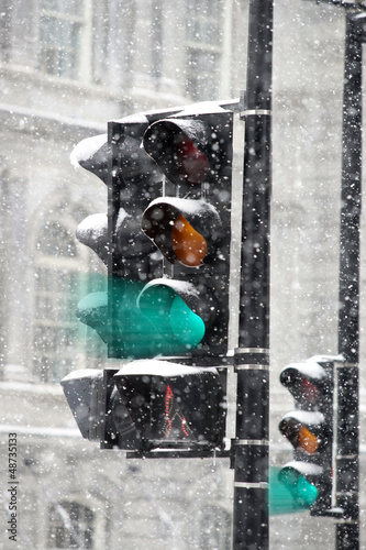 Poster Traffic light in winter