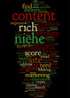 Making Money From Content Rich Sites Concept