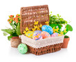 easter eggs in basket with spring flowers and green leaves
