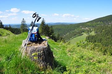 Landschaft im Thüringer Wald