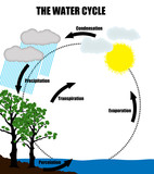 Schematic representation of the water cycle in nature poster