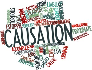 Word cloud for Causation