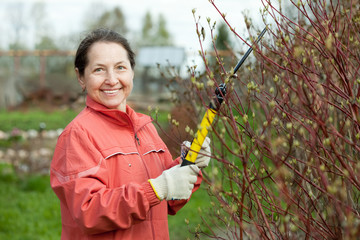 Mature woman pruning bush
