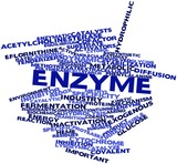 Word cloud for Enzyme