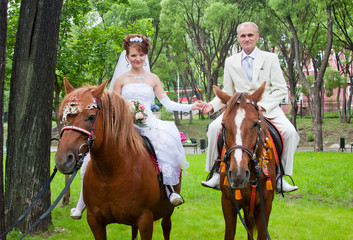 a groom and fiancee sit on two horse
