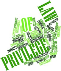 Word cloud for Law of Privilege