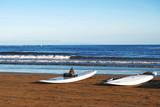 Fototapeta kanarek - przeznaczenia - Plaża