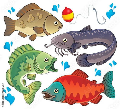 Various freshwater fishes 2