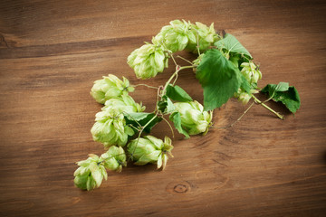 Fresh green hops on a wooden table.Fresh green hops on a wooden