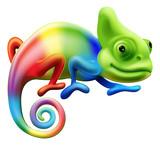 Fototapety Rainbow chameleon