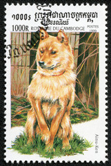 stamp printed by Cambodia, shows a dog