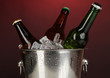 Beer bottles in ice bucket on darck red background