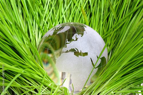Earth in green grass