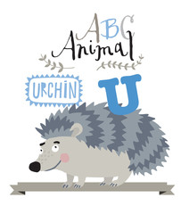 ABC animals: U is for urchin. Vector Graphics