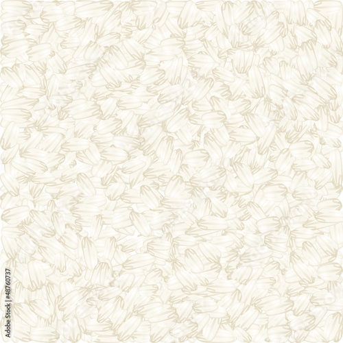 White rice vector background