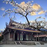 Fototapete Asiatische spezialitäten - Ashtray - Hintergrund