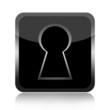 Black key hole icon