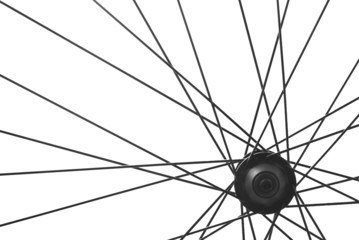 bicycle spoke detail