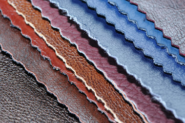 Artificial Leather Samples