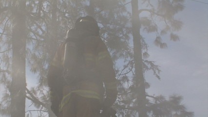 Firefighter Standing In Smoke, Surrounded By Trees