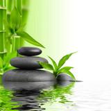 Fototapeta kamień - bambus - Relaks