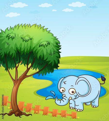 An elephant playing in a water