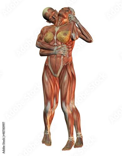 GamesAgeddon - Anatomie - Frau Ganzkörper - Lizenzfreie Fotos ...