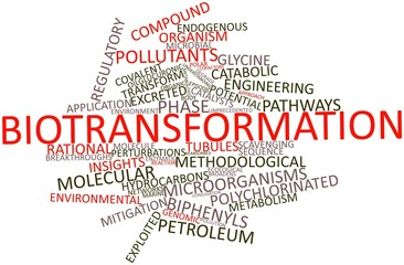 Word cloud for Biotransformation