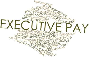 Word cloud for Executive pay