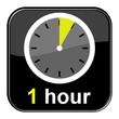 Glossy Button schwarz - 1 hour